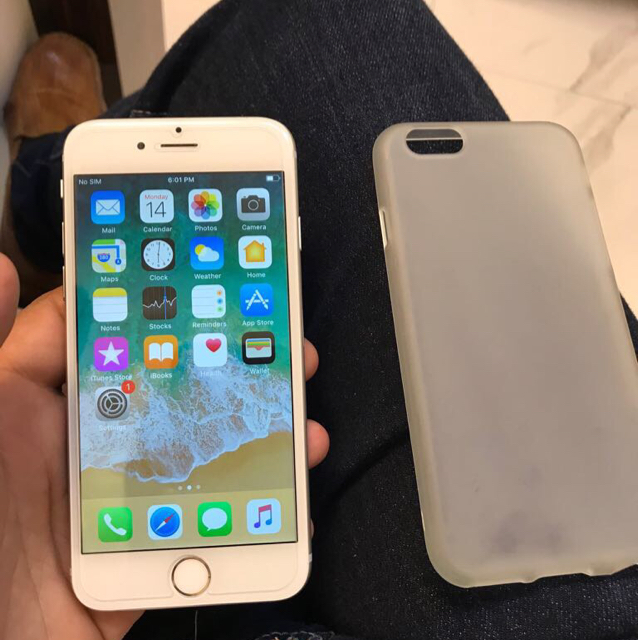 Iphone 6 Gold 16 Gig Complete Accessories