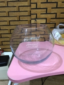 Used Globe aquarium  in Dubai, UAE