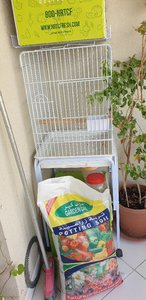 Used Burd cage in Dubai, UAE