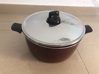 Tefal pleasure 30cm stewpot with lid