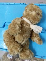 Used TEDDY BEAR BROWN in Dubai, UAE