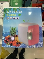 Portable fridge for home and car 4 liter
