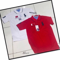 Used 2 Polo Shirt Medium 💙 in Dubai, UAE