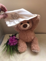 NEW Peek-a-Boo Teddy Bear Music Plush