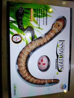 Snake toy with remote control