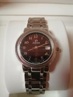 Aigner Brown Dial