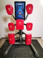 Used Kickboxing machine  in Dubai, UAE