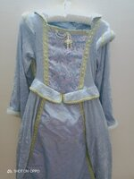Used Princess dress with head band in velvet in Dubai, UAE