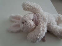 Used teddy bear white in Dubai, UAE