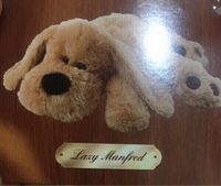 Used Lazy Manfred  in Dubai, UAE
