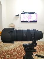 Used Sigma 50-500mm f/4.5-6.3  for canon in Dubai, UAE