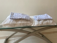 Used Set of 2 pillows + 2 pillow covers in Dubai, UAE