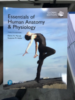 Used Essential if human anatomy &physiology in Dubai, UAE
