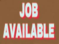 Used Part Time Job From Home in Dubai, UAE