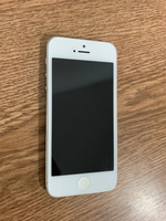 Used iPhone 5 dead in Dubai, UAE