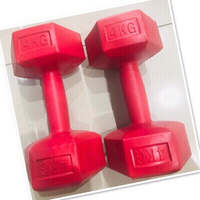 Used 4kg Dumbell 2X ♥️ in Dubai, UAE