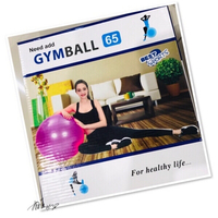 Used Gym Ball 💙 in Dubai, UAE