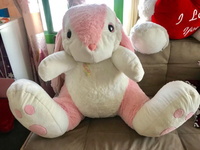 Used Bunny stuff toy in Dubai, UAE
