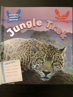 Used Jungle Book for kids in Dubai, UAE