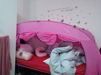 Used Pop bed tent in Dubai, UAE