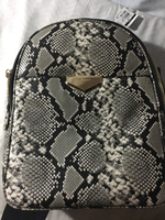 Used Aldo backpack snakes skin in Dubai, UAE