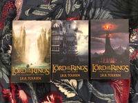 Used Lord of the Rings (all 3 volumes) in Dubai, UAE