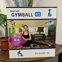 Used Gym Ball 65cm (5 colors to choose from) in Dubai, UAE