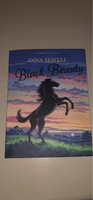 Used Black Beauty by Anna Sewell  in Dubai, UAE