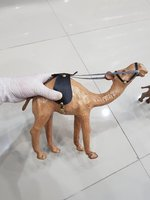 Used Wooden Hand carved Camel & Calf ♥️ in Dubai, UAE