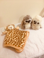 Used Bukowski Design Taddy Bear and Owl in Dubai, UAE