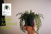 Used Artificial Plant in Dubai, UAE