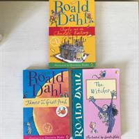 Roald Dahl's Books. For Young Adults.