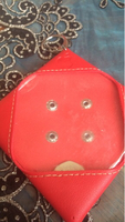 Used Apple carrying pouch in Dubai, UAE