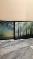 2 Framed Pictures