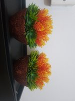 Used 2  Flower with vase sale in Dubai, UAE