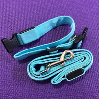 Used LED Dog Collar & Leash/Large  in Dubai, UAE