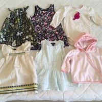 Baby Gap Dresses (12-18mths) X 3, Gymboree Baby Onesie (12-18m), H&M Butterfly Dress (12-18), Cotton On Baby Pink Hoodie (12-18m). All Used But In Very Good Condition. Worn Only Few Times. Very Good Brands.