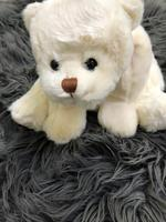 Used Teddy bear bundled in Dubai, UAE
