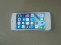 Used IPhone 5 64 in Dubai, UAE