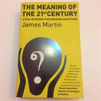 Used James Martin- Meaning Of The 21st Century  in Dubai, UAE