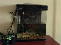 Aquarium With Accessories And Light. Used For 2 Days Only. We Need To Shred Things Asap.