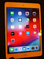 Used ipad Mini 2 16 GB in Dubai, UAE
