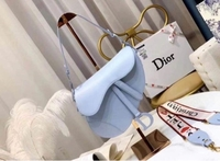 Dior Saddle Mastercopy with code New