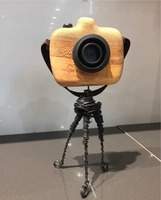 Used Handmade wooden sculptures camera in Dubai, UAE