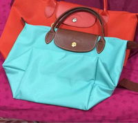 Longchamp bag small size