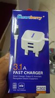Used Fast Charger 3.1(Smart Berry) in Dubai, UAE