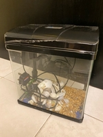 Used Fish aquarium in Dubai, UAE