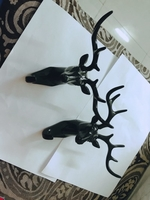 Used Deer head wall hook(24 Aed) 2pcs in Dubai, UAE