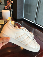 Used Original adidas superstar used  in Dubai, UAE