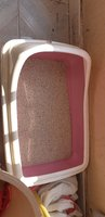Used Cat litter box in Dubai, UAE